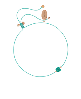 TURQUOISE Armband Türkis