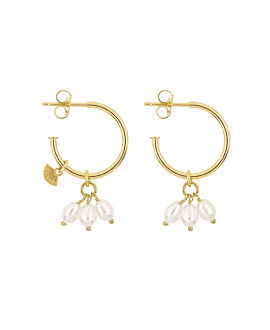 DROOPY PEARLS|Creolen Gold