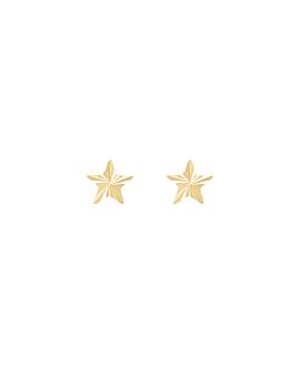RADIANT STAR|Stecker 14K Gold
