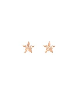 RADIANT STAR|Stecker 14K Roségold